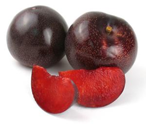 Plumogranate Plumcot